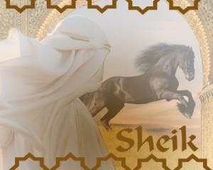sheik_tratamiento_encaje